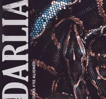 darlia-stars-are-aligned-darlia-400x375