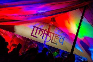 Linkylea Fest 2014 1