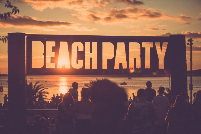 Outlook 2014 - credit Dan Medhurst - beach party